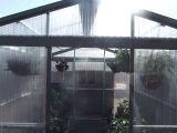 Full Greenhouse Ireland